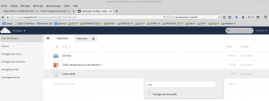 owncloud-shared-file